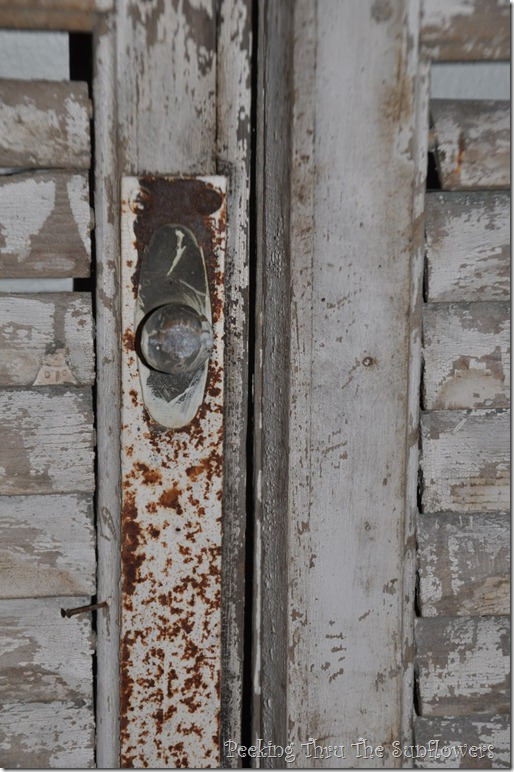 shutters2 006