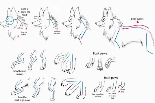Desenhando lobos  Part 2