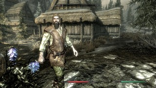 Skyrim Beards (16)