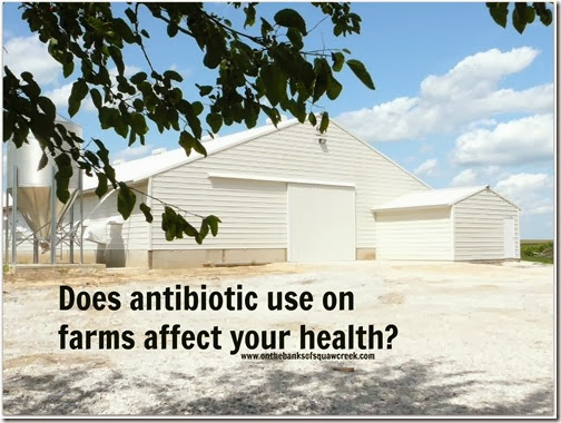 does antibiotic use on farms affect human health