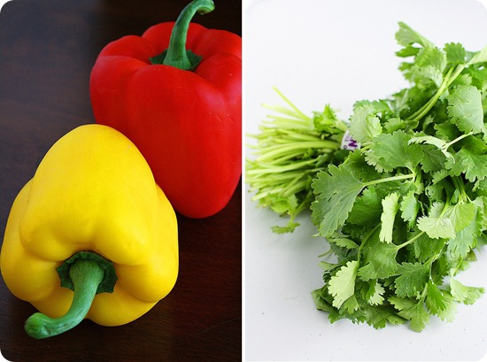 Bell Peppers and Cilantro