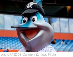 'Billy the Marlin :)' photo (c) 2009, Carmen Zuniga - license: http://creativecommons.org/licenses/by-sa/2.0/