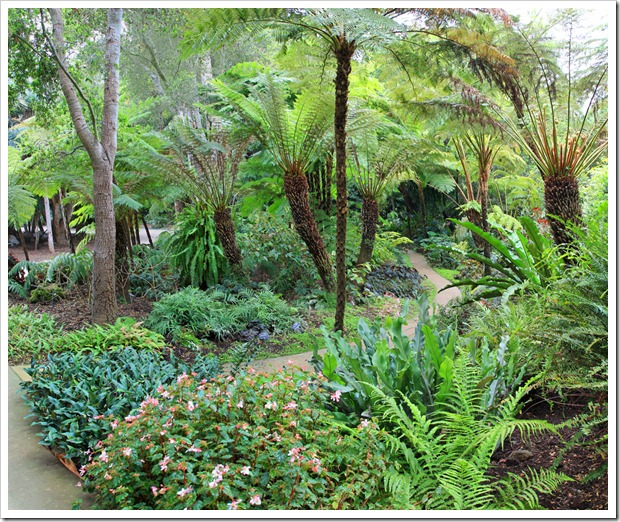 130403_Lotusland_Fern-Garden_pano