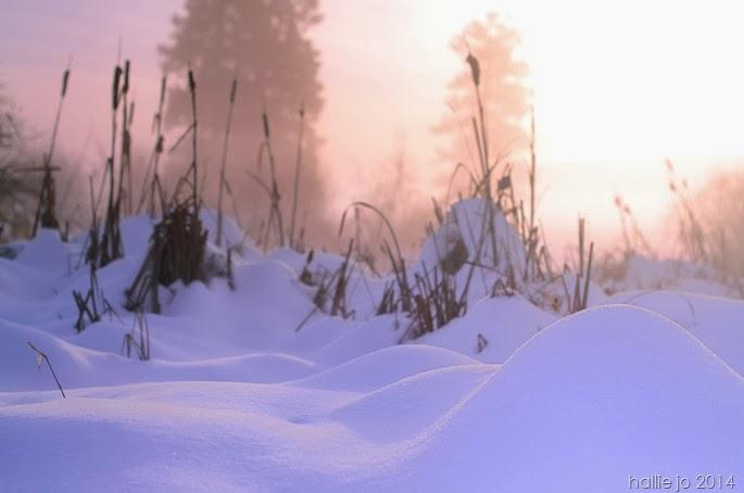 Snowfall7