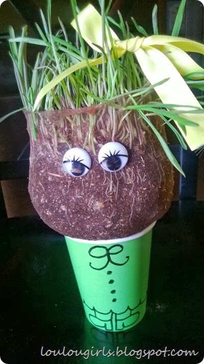rainy day activity homemade chia pet