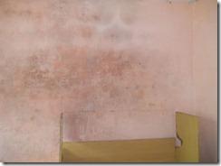 parede com mofo (7)