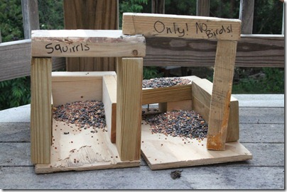 The 10 Minute Squirrel House not really