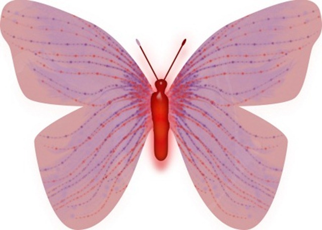 butterfly 3 WEB