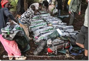Carregadores na subida ao Kilimanjaro