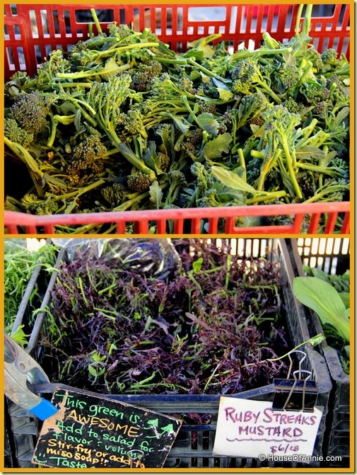 Broccoli Dicicco and Red Streak Mustard from Heirloom Organics stand at Saratoga Farmer's Market5