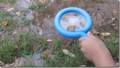Mombo Sanke Magnifying Glass