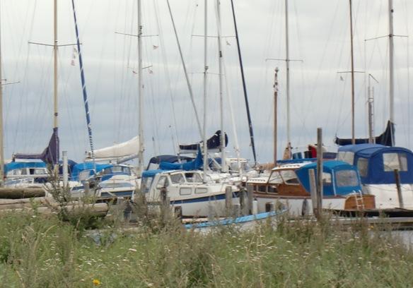Aug.Biri, DK,Trollsvann-11037