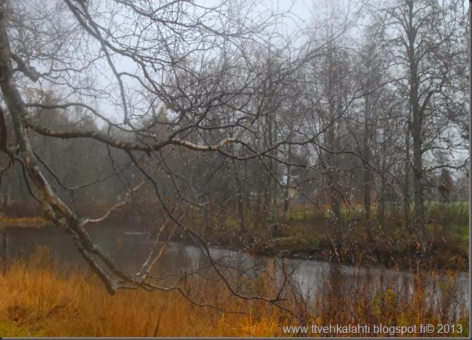 lauantain sää kuvia orava 027