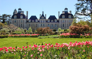 tulipes-cheverny-2©S-Clamens