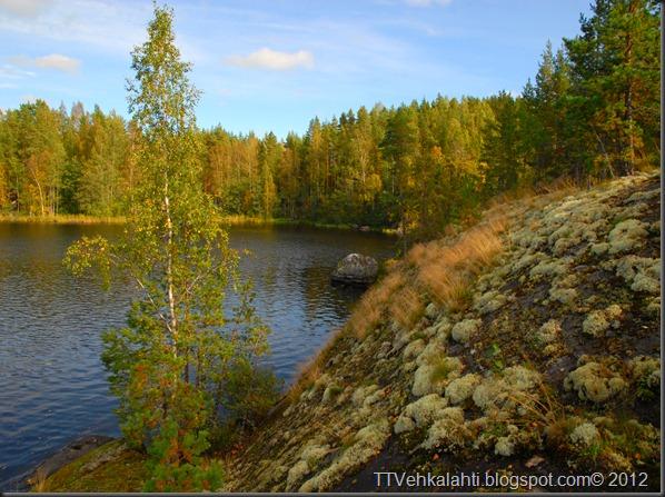 ötökät ikkunssa haukijärvi keloja 051
