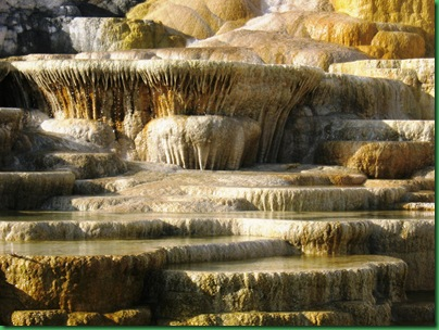 Mammoth Hot Springs Terraces (267)