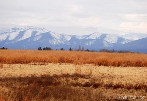 1. Snowy mountains-kab