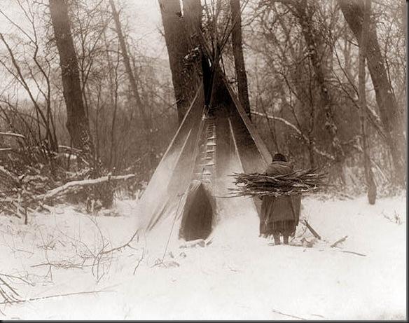 gathering-wood