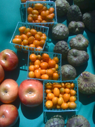 Apples, kumquats, and cherimoyas.