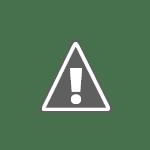 L'Orchestre - Duo Gamma