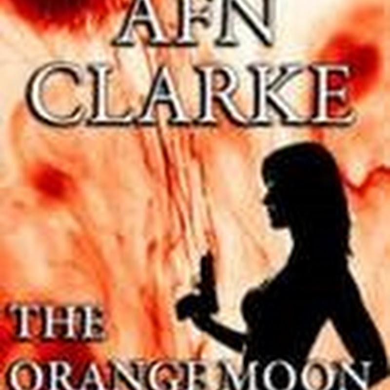 Book of the Day - The Orange Moon Affair by AFN Clarke