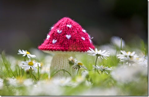 Knitted Toadstool5