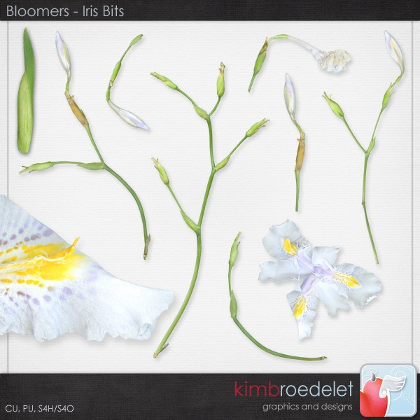 kb-Bloomers_irisbits