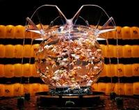 Peixes são tema de exposição e brincadeiras em festivais no Japão