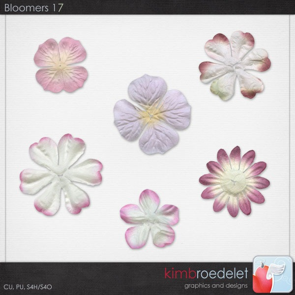 kb-bloomers17