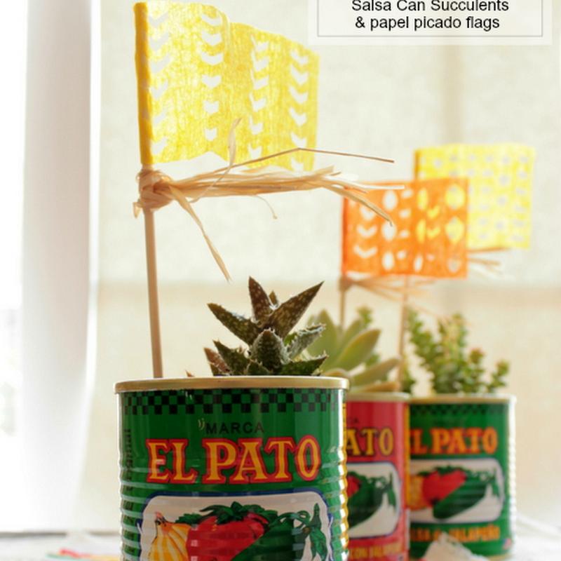 CELEBRATIONS: Cinco de Mayo Succulent Cans