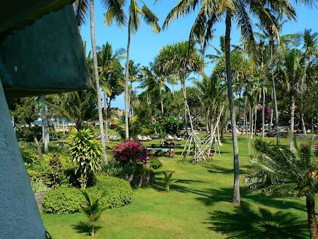 Hotel Hyatt Sanur green garden
