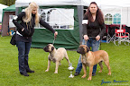 20100513-Bullmastiff-Clubmatch_30974.jpg