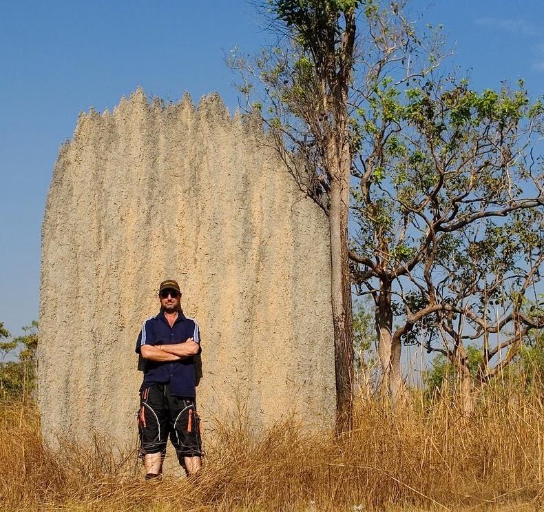 magnetic-termites-5