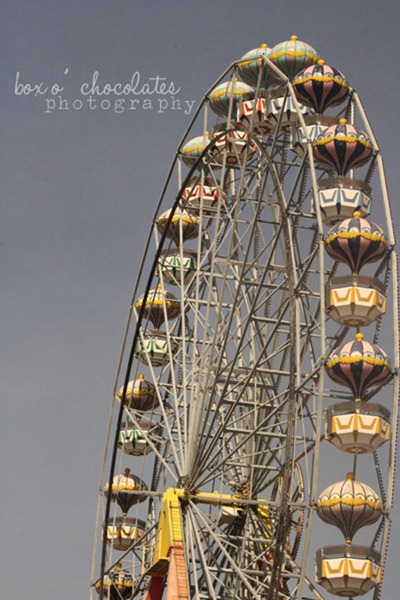 Ferris Wheel on the Tigre River2