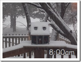 8oclock Snow Storm 02042014 (5)