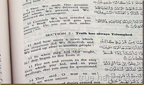 -the-holy-quran