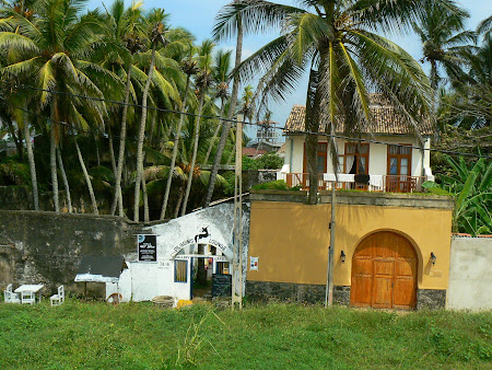 Sights of Sri Lanka: palm trees in Galle