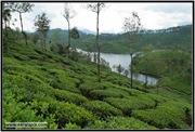 AVV_063__DSC0242-Edit_www.keralapix.com_063