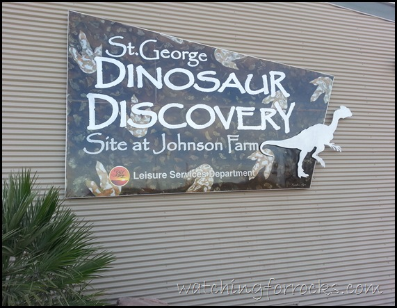DinoMuseum