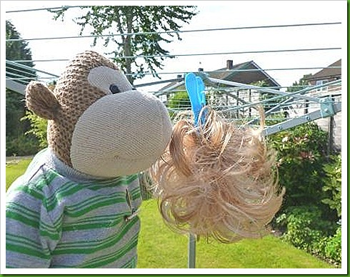 Hanging wig out to dry