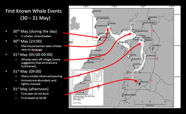Map of whale stranding event, 30-31 May 2008. Approximately 100 melon-headed whales stranded in the Loza Lagoon system in Madagascar. The stranding was caused by seismic testing conducted by an ExxonMobil. Graphic: IWC