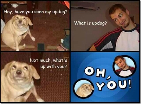 Have you seen my updog
