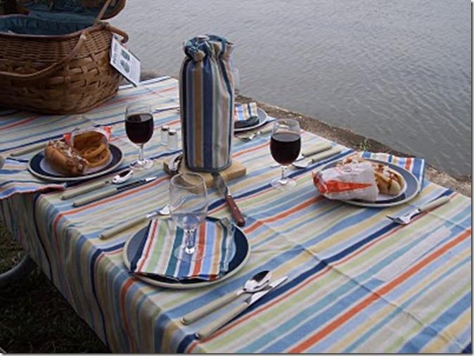 picnic 016