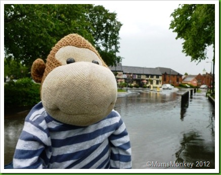 Flooded Bilbrook