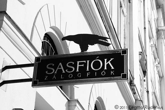 sign_20111002_bird