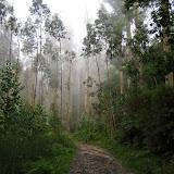 Camino 0912.JPG
