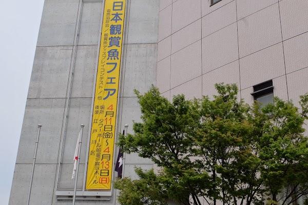 DSCF3736.JPG