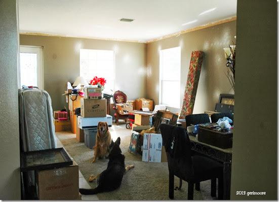 Living room 016