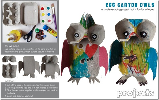 Owl Project Small Mag