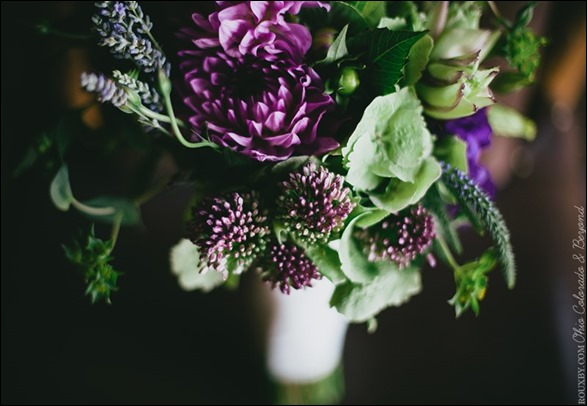 582817_425882450782314_1565556478_n  ladybird poppy floral design
